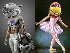 KSU vs. KU Football