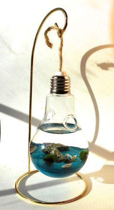 Marimo Terrarium in hanging lightbulb vase with stand - I just think this is a really unique gift idea. Would be a great addition to someone with a desk/cubicle job Idei creative de a transforma becurile arse in obiecte decorative idei creative 3 Diy ligh Light Bulb Art, Light Bulb Crafts, Fun Crafts, Diy And Crafts, Deco Originale, Terrarium Diy, Hanging Terrarium, Ideias Diy, Diy Art