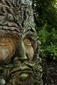 The Green Man Carved in a Tree