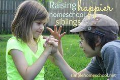 Raising happier homeschool siblings