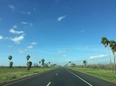 Highway 77, South Texas. Traveled this road many times when my parents lived in The Valley - San Benito, to be exact. __Kathy N