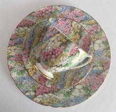 Vintage Shelley Chintz Tea Cup & Saucer Rock Garden Pattern Ripon Shape