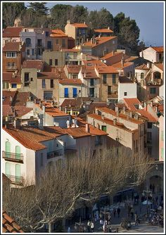 Rooftops of Collioure, France