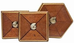 Museum Bee Collection by Trace Mayer. Made with Recycled Antique American Frames and Ammonite Fossils