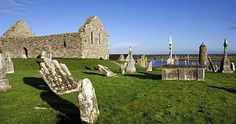 Offaly Ireland - Google Search