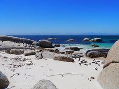 Popular on 500px : Boulders Penguin Colony by szirazabierowski