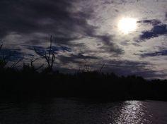 Reserva de la Biosfera Río Lagartos Yucatán, México.