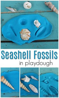 This simple activity helps kids learn about fossils and about seashells while engaging in fun sensory play. - Kids education and learning acts Playdough Activities, Ocean Activities, Craft Activities For Kids, Infant Activities, Summer Activities, Preschool Activities, Motor Activities, Toddler Play, Toddler Preschool