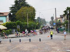 Ecco il passaggio del gruppo di ciclisti, domenica 2 ottobre 2016, per Piovega - Piove di Sacco PD. Bravi e belli da vedere!