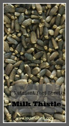 Nutrient Fact Sheet; Milk Thistle. This little seed plays a huge role in your liver and whole body health. Loula Natural