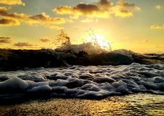 Golden morning. #FortLauderdale #ThingsToDoInFortLauderdale #FortLauderdaleAttractions