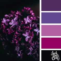 Purple color scheme | 25 color palettes inspired by the PANTONE color trend predictions for Spring 2018 - Use these color schemes as inspiration for your next colorful project! Check out more color schemes at www.sarahrenaeclark.com #color #colorpalette