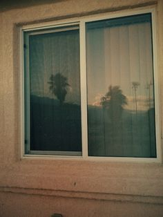 Palms and stucco...must be Cali - Writing inspiration #nanowrimo #settings #scenes