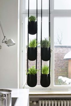25 Small Urban Garden Design Ideas: For those of you who live in smaller spaces, but still want to indulge your green thumb, below are some great ideas for urban gardening. Herbs Indoors, Small Urban Garden Design, Garden Bags, House Window Design, Plant Bags, Garden Hanger, Hanging Garden, Planter Pots Indoor, Indoor Plants