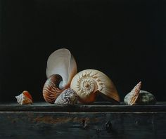 Still life with shells 1. Oil on panel, 55x46cm SOLD