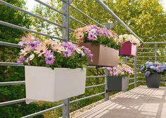 Lechuza Balconera Blumentopf #Balkon #Blumen #Blumentopf #Terrasse #Garten #Galaxus