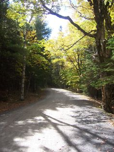 Carriage Trails, Acadia National Park, MDI