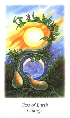 Vision Quest Tarot ► Two of Earth Change