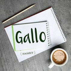 Parola del giorno / Word of the day: Gallo (rooster). Il gallo canta al mattino presto, prima del sorgere del sole. = The rooster sings early in the morning, before sunrise. Learn more about this word and see example phrases by visiting our website! #italian #italiano #italianlanguage #italianlessons