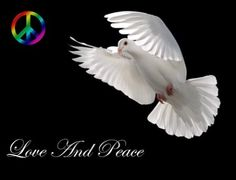 Peace Symbol Wallpapers