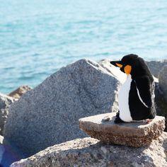 Los pingüinos son animales elegantes, siempre van de riguroso traje de color blanco y negro aunque haga un frío que pela. Viven en el Hemisferio Sur, por lo que es un peluche de lo más exótico. Los pingïnos tienen un andar torpe muy gracioso, debido a que sus pies prácticamente no se levantan del suelo y aunque tienen alas no pueden volar, solo saben nadar a la perfección.