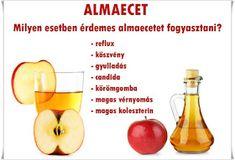 Health Fitness, Fruit, Healthy, Food, Erika, Health, Essen, Meals, Fitness