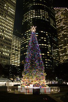 Downtown Houston Christmas tree- I used to work in the middle bldg.