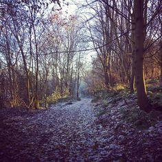 Mud path...