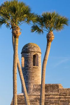 The bell tower on the San Carlos Bastion corner of the Castillo de San Marcos, a seventeenth century Spanish fortress in St. Augustine, Florida, is framed by tall palm trees. Photograph by Kenneth Keifer.