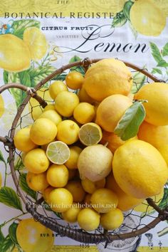 """""""a surprise delivery of some home-grown California sunshine in the form of citrus~ lemons, limes and a few grapefruit""""..."""