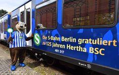Einsteigen bitte! Unsere blau-weiße Jubiläums-S-Bahn fährt  auf der Linie S7  #hertha125 #hahohe