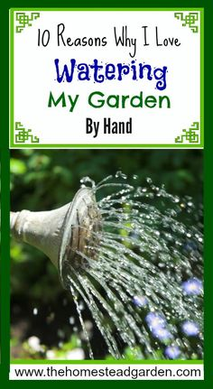 10 Reasons Why I Love Watering My Garden By Hand: