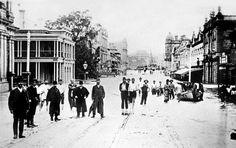 Brisbane City, Local History, Old Photos, Past, Street View, Ancestry, Australia, Queen, Jane Wilson
