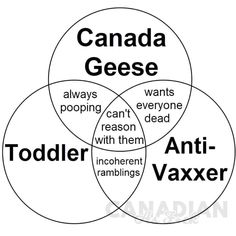 Canadian Memes, In A Nutshell, What Is Like, Wisdom, Make It Yourself, Humor, Feelings, How To Make, Chart
