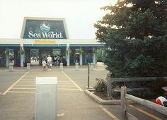 Sea World, Aurora OH