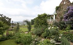 A rambling English country garden in the heart of the misty KZN Midlands