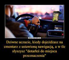 Demotywatory.pl Funny Memes, Jokes, Lol, Humor, Random, Husky Jokes, Humour, Memes, Funny Photos