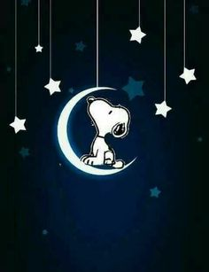 Snoopy Love, Snoopy And Woodstock, Snoopy Images, Snoopy Pictures, Charlie Brown Halloween, Charlie Brown And Snoopy, Peanuts Cartoon, Peanuts Snoopy, Snoopy Wallpaper