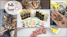 Superfoods für Katzen | Gimcat