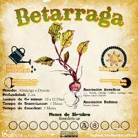 Germina La Florida: Calendario de Siembra de Agosto Eco Garden, Garden Deco, Organic Plants, Organic Gardening, Growing Plants, Growing Vegetables, Bussines Ideas, Botanical Gardens, Vegetable Garden