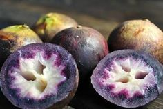 Chrysophyllum Cainito Caimito Purple Star Apple 3 by Ripe Fruit, New Fruit, Fruit And Veg, Exotic Fruit, Tropical Fruits, Star Apple, Fruit Bearing Trees, Purple Fruit