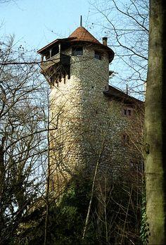 Reichenstein Castle (German: Burg Reichenstein) is a castle in the municipality of Arlesheim in the canton of Basel-Land in Switzerland.