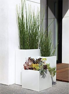 Steel rectangular planters. like the plants too.