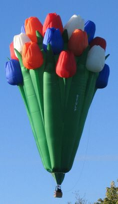 special_shape_hot_air_balloon_bouquet_of_tulips