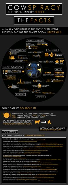 Cowspiracy facts | how animal agriculture is one of the most destructive industry facing the Earth today, and how many of the top environmental organisations in the world really don't seem to want to talk about it.