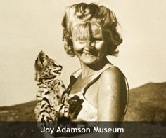 Joy Adamson and Penny the leopard (Joy Adamson Museum) - Joy's Camp in Shaba National Reserve, Kenya