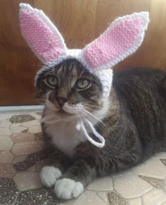 Cat Bunny Ears by StitchedAdventures on Etsy