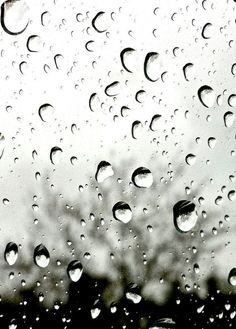 It rained the day they brought us to Thurmond, and it went on to rain straight through the week, and the week after that. Freezing rain... I would have followed the drops' swerving routes across the cold glass with my fingertips. Now, my hands were tied together behind my back.