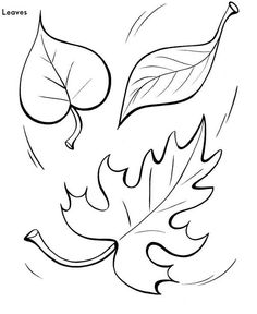 Pictures to Print and Color  Tree leaf to print and color 003