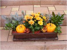 Fall Crafts, Diy And Crafts, Floral Hoops, Balcony Garden, Halloween, Fall Decor, Pumpkin, Xmas, Seasons